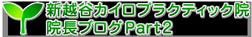 新越谷カイロプラクティック院 院長ブログPart 2