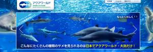 アクアワールド茨城県大洗水族館   関東最大規模の海の総合ミュージアム