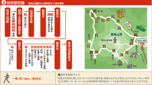 FireShot Capture 24 - map02_course04.png (645×360)_ - http___www.mir.co.jp_towntopics_im