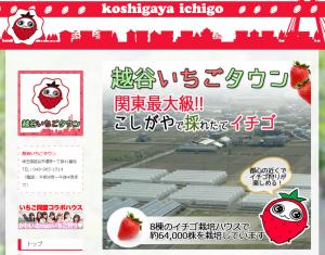FireShot Capture 73 - 越谷いちごタウン I みんなで「採りたてのイチゴ」を食べに行こう! - http___ichigo-town.com_